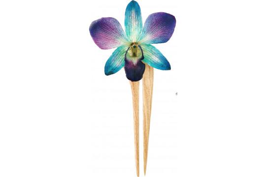 Orchidea Viola e Blu con...