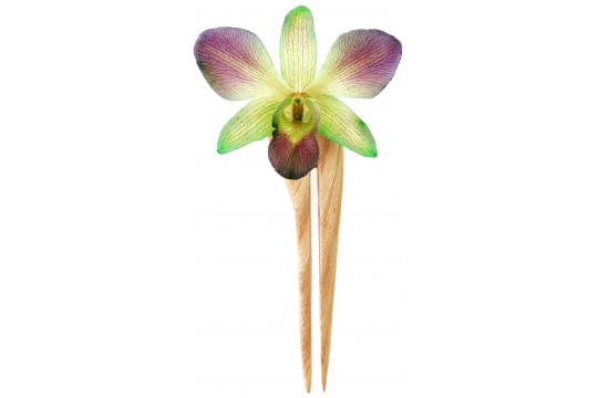Orchidea Viola e Verde con...